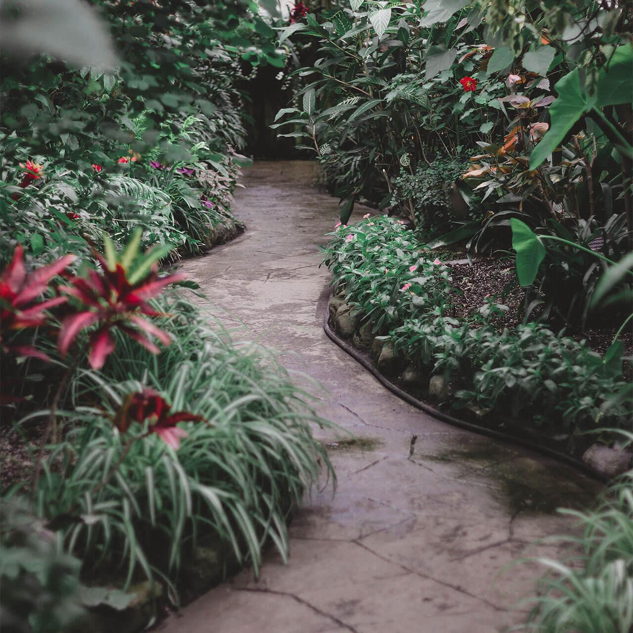 garden4_pic20